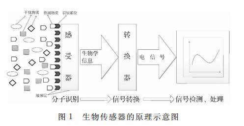 生物传感器的发展历程